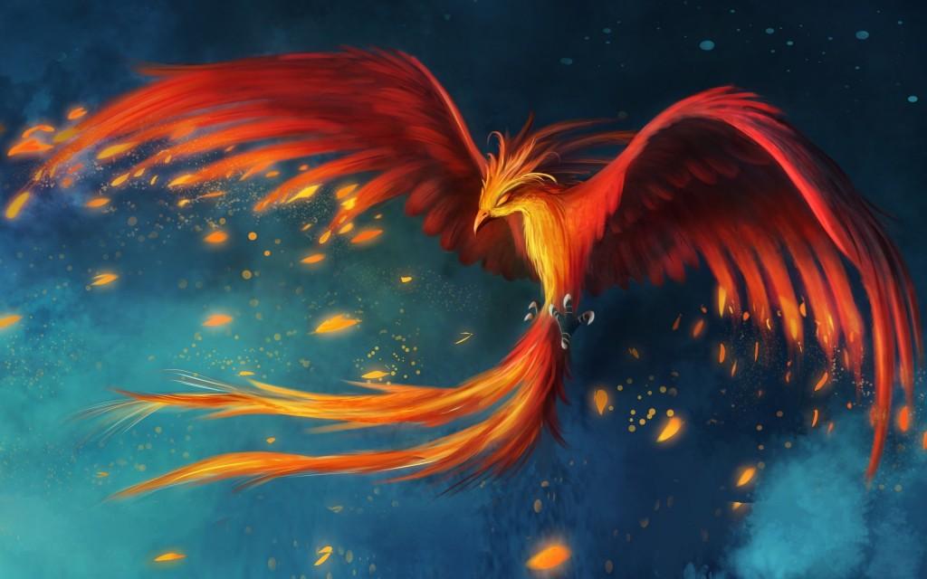 phoenix boogie